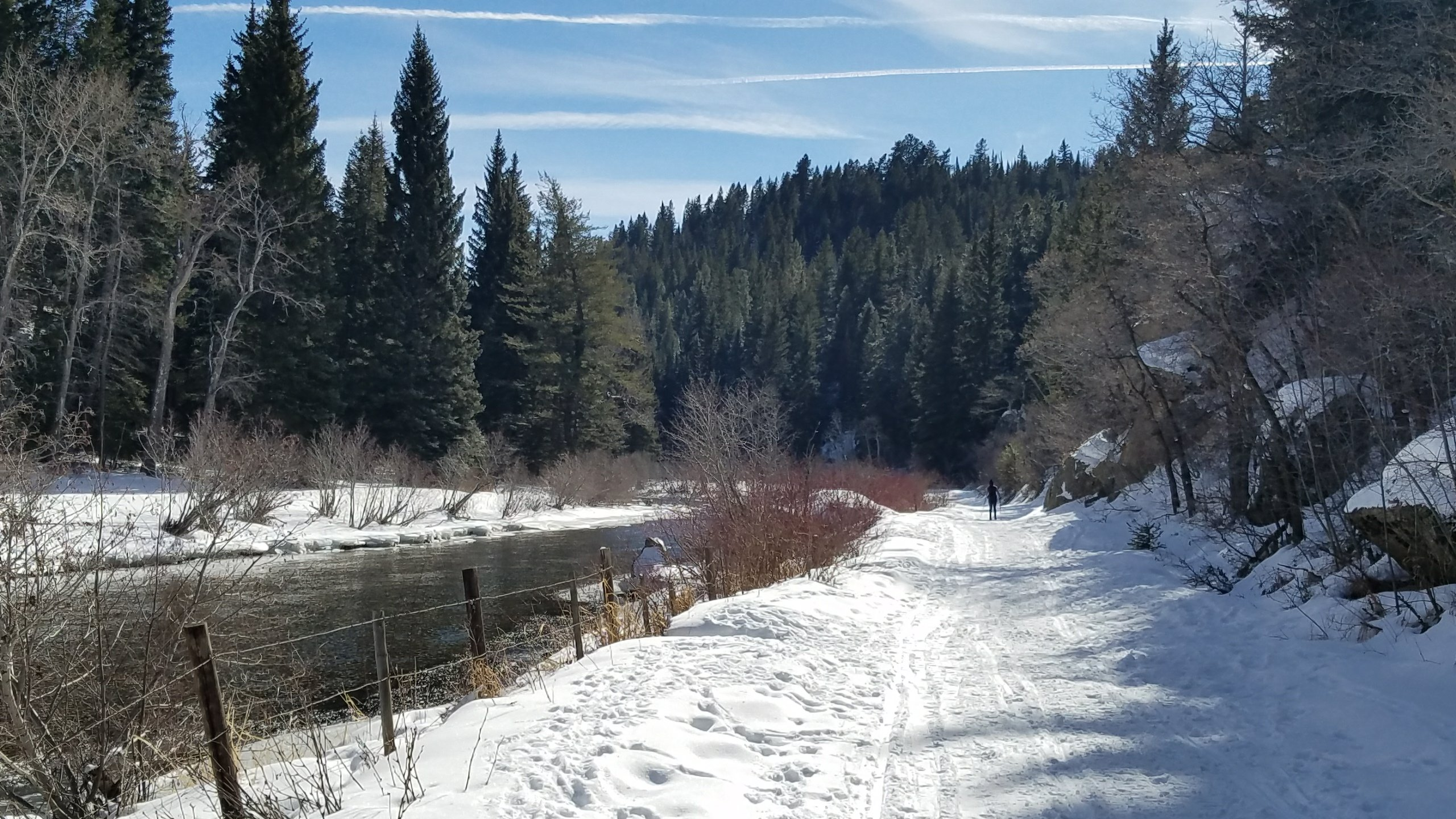 Cross Country Skiing along Sarvis Creek